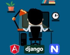 Full Stack Dev – Web, Mobile, Back-End API (Angular, Django)